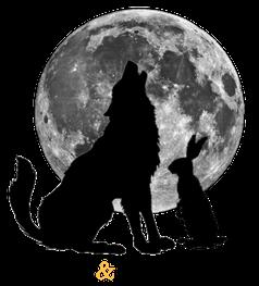 Wolf and Rabbit Marketing